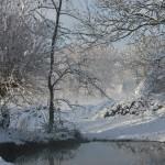 L'hiver, prés de la Liane